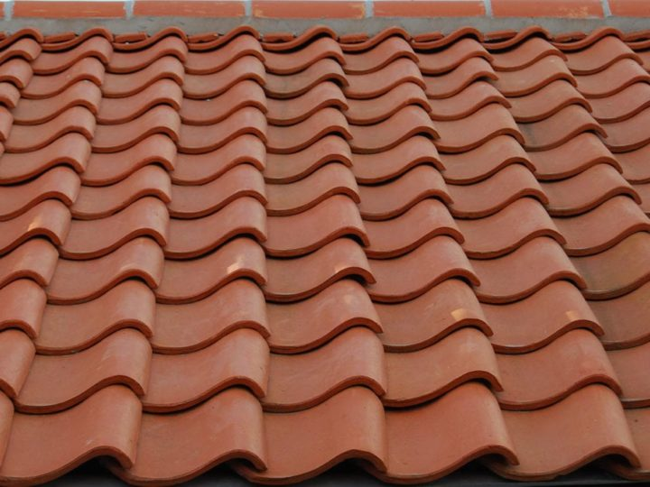The World of Clay Roofs
